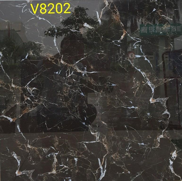 V8202