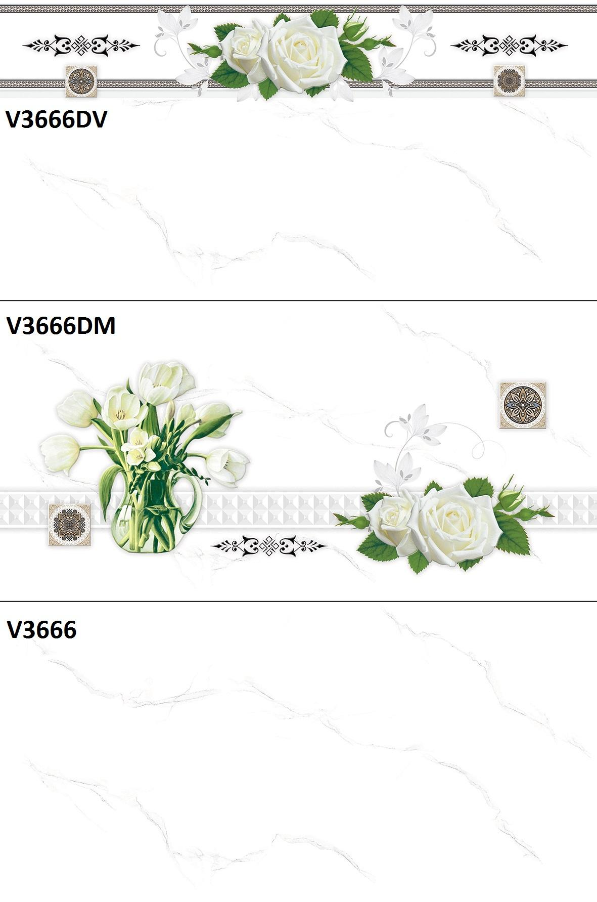 V3666