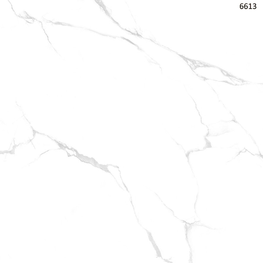 W6613