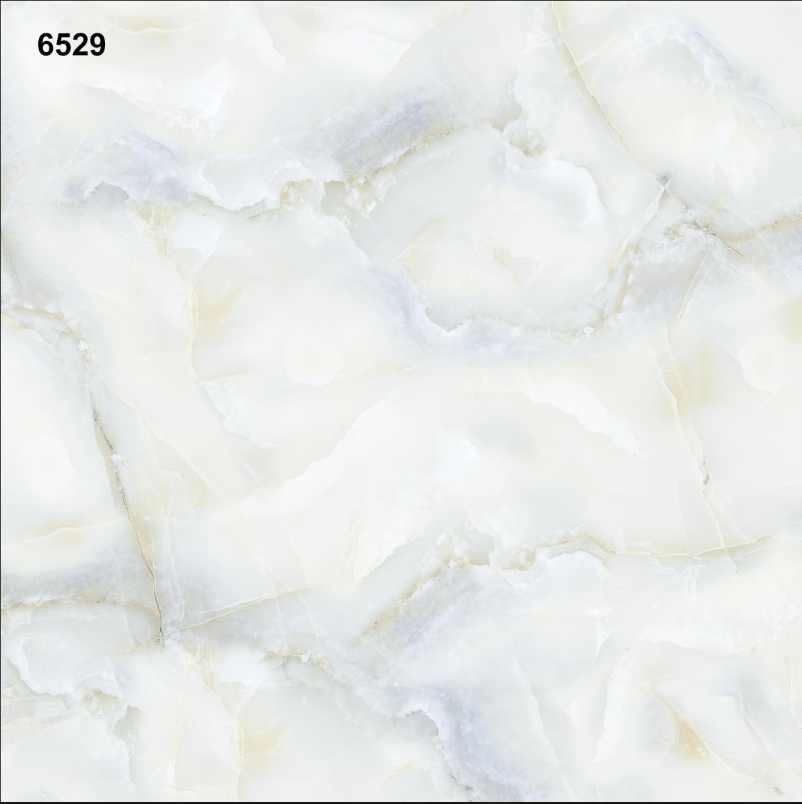 W6529